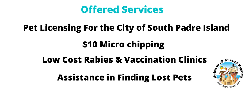 Offered Services.png
