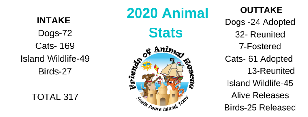 Copy of March 2019 Animal Numbers-1.png