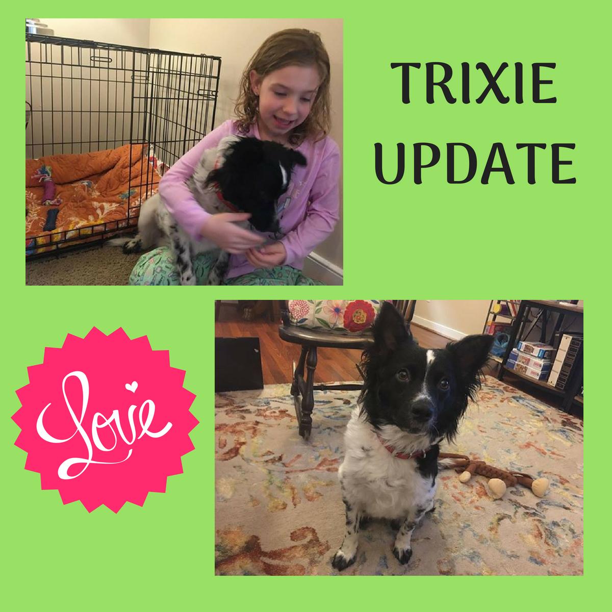 Trixie.