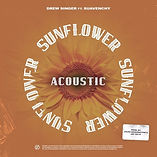 DREW SINGER - SUNFLOWER (Acoustic Versio
