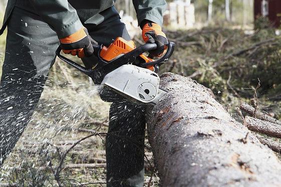 kokmateriālu sagatavošana ar rokas motorzāģiem