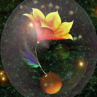 cosmosflower.jpg