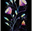 purpleflower.jpg