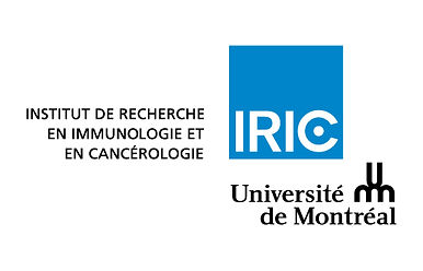 logo-iric-universite-de-montreal-rgb.jpg