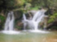Puigpardines_053.jpg