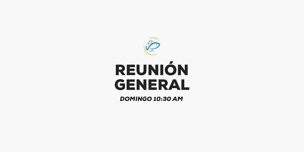 GENERAL Domingo 10:30 a.m.