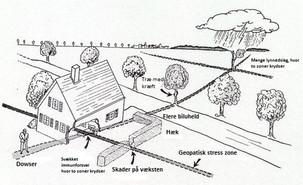 Hvad er geopatisk stress? Jordstråling?