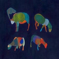 Mouton galeux