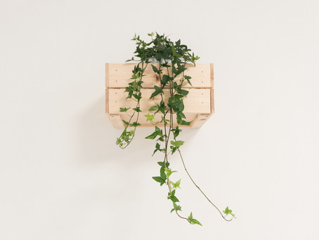 How To: Office Vertical Garden