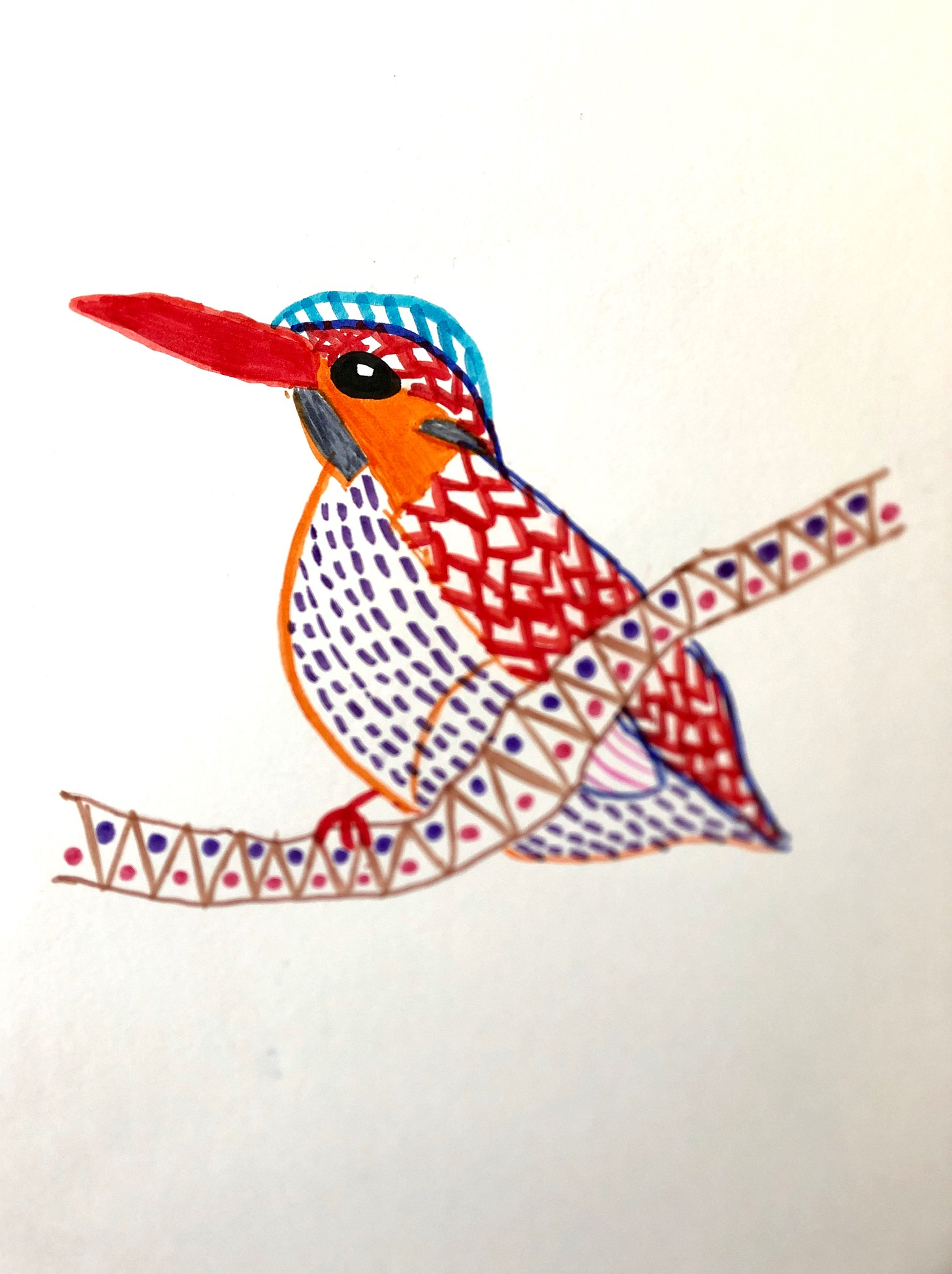 Bird Illustration by Sophie Age 9