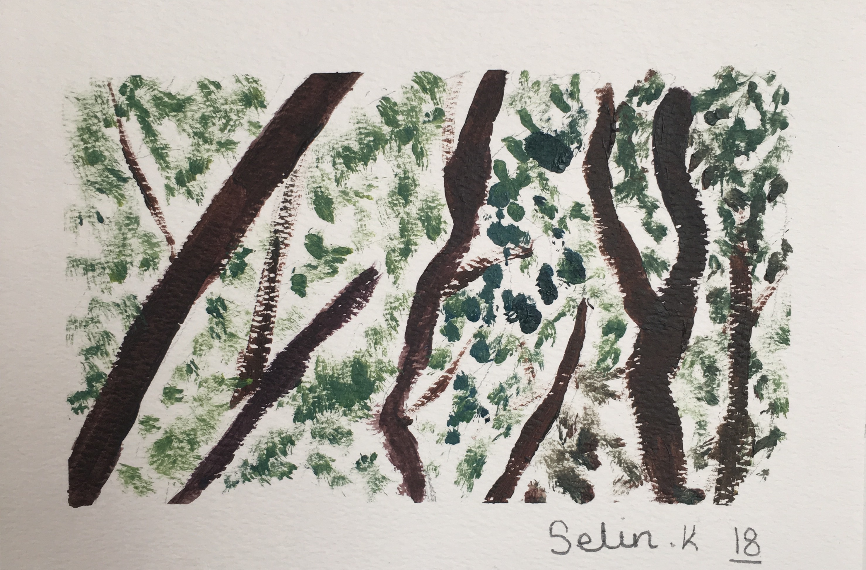 Trees by Selin