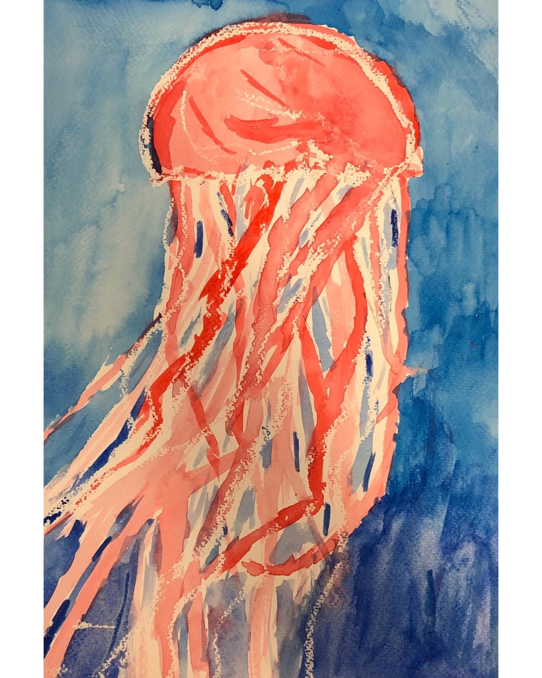 Jellyfish Watercolours
