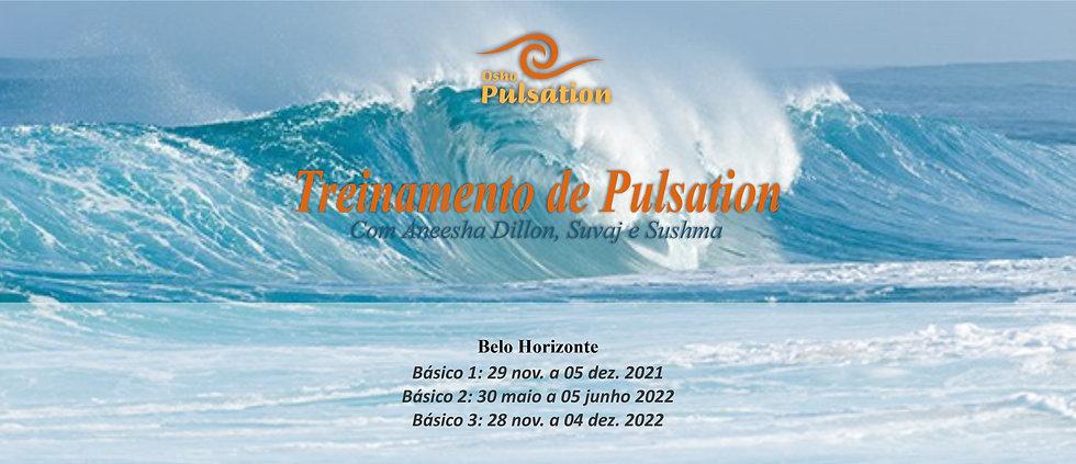 treinamento de pulsation banner.jpg