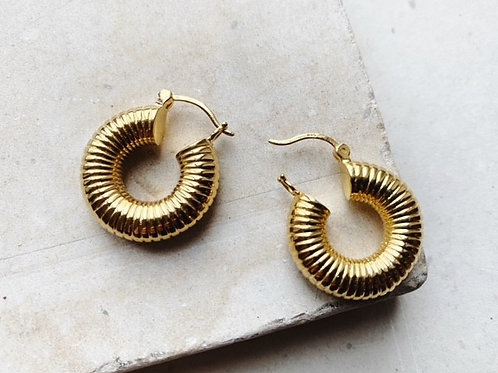 Monica Ribbed Solid Earrings