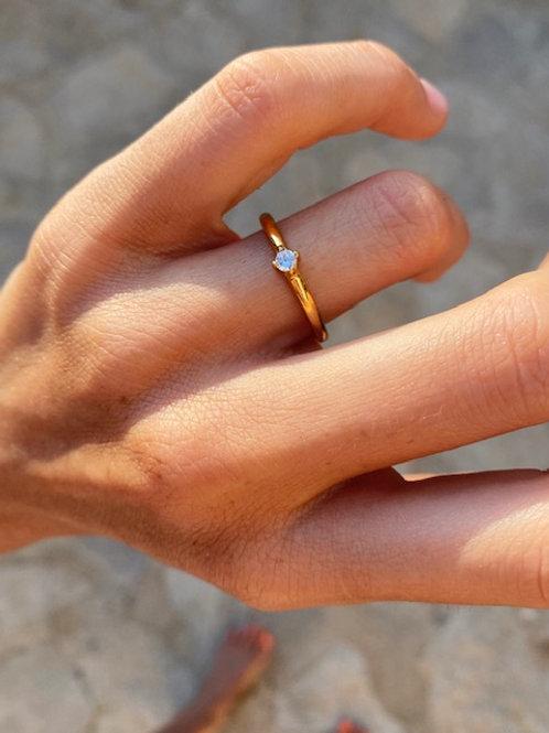 Misha Ring