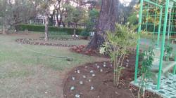 Jardim em construção...