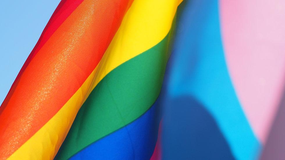 Pride%20Flag_edited.jpg