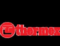 TERMEX логотоип.png