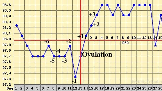 Graph charting fertility cycle