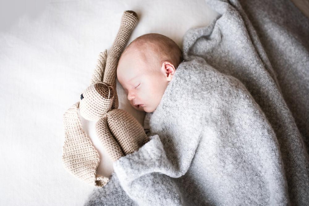 baby teddy decke foto