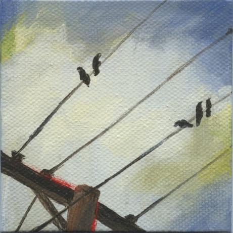 Bird on a Wire 03