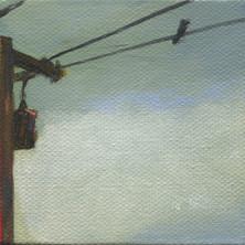 Bird on a Wire 13