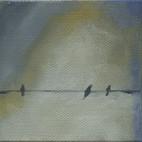 Bird on a Wire 08
