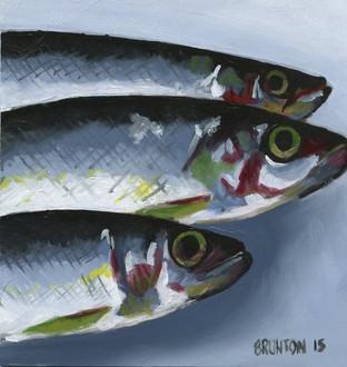 Sardines - SOLD