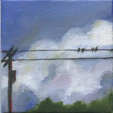 Bird on a Wire 12