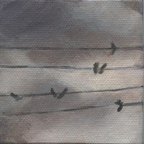 Bird on a Wire 02