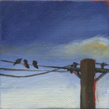 Bird on a Wire 05