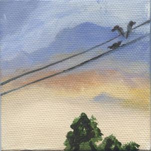 Bird on a Wire 09