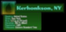 Kerhonkson Zone Title