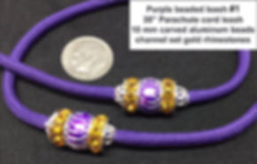 purple leash 1.jpg