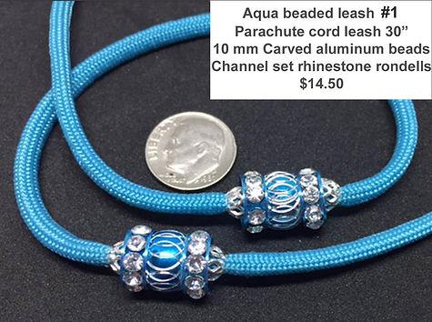 aqua leash 1.jpg