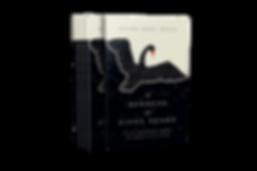 060-6x9-Book-Boxset-Small-Spine-Mockup-C