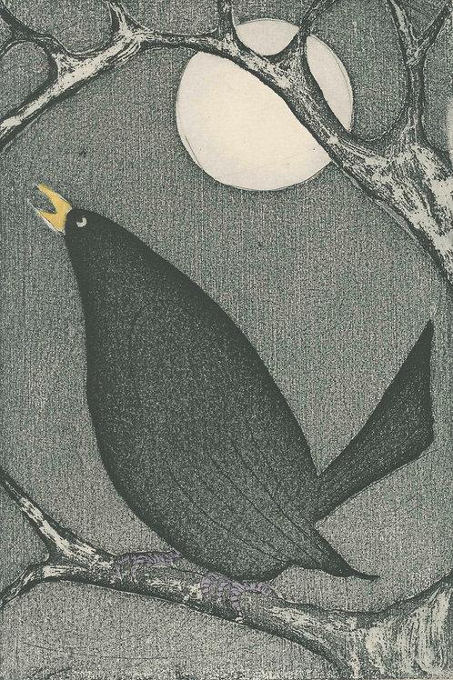 'Moonlight Sonata',  Margaret Becker
