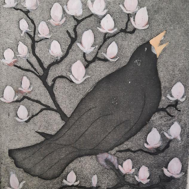 Blackbird with Magnolia 1