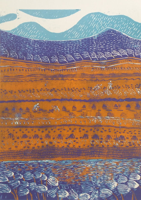 'Day on the Bog', Val Hennigan