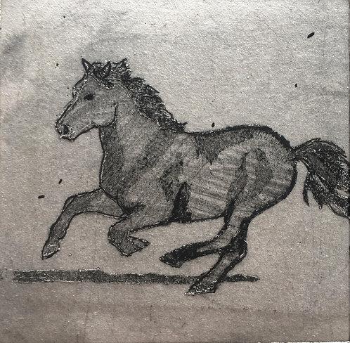 'Jester Galloping', MaryMcGrath