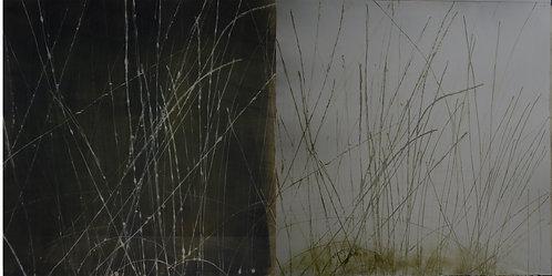 'Still', Hilary Kinahan