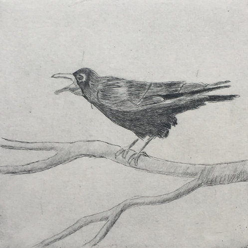Angry Crow, MaryMcGrath