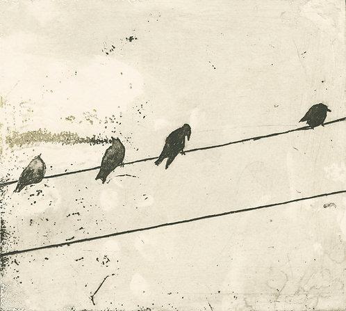 """""""Chatterers"""", Pamela de Brí"""