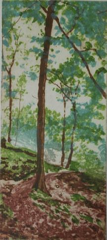 """Spring Trees"""