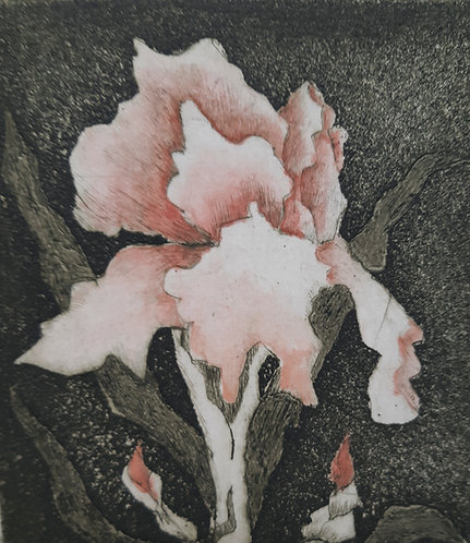 'Botanic Bloom', Margaret Becker