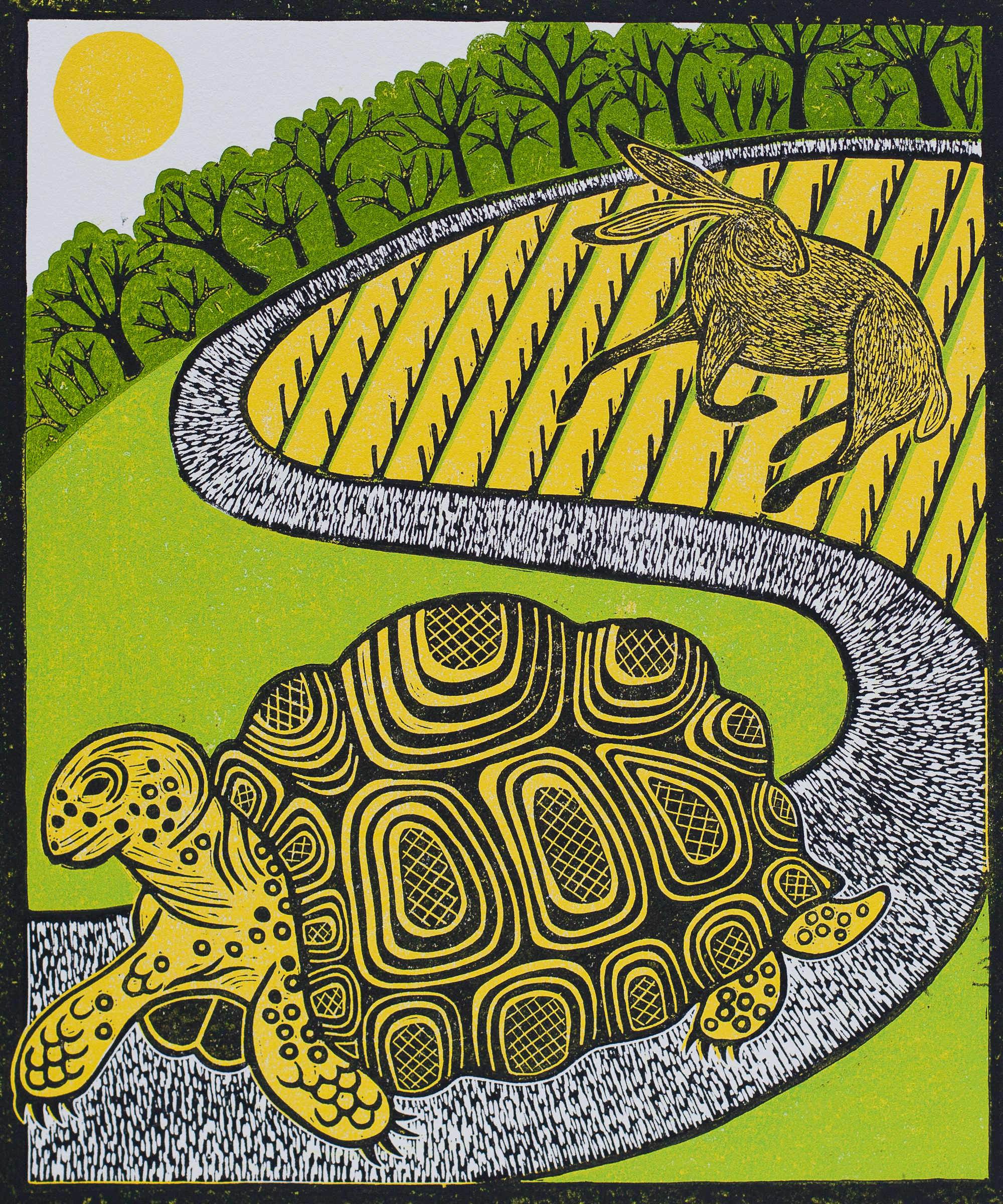 The Tortoise and the Hare, Rebecca Homfr