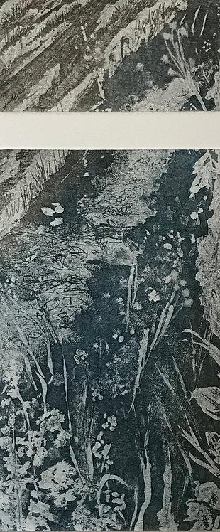 'Wicklow series #1, Nuala O'Dea