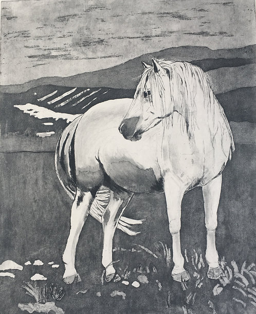 'Kerry Bog Pony',  Mary McGrath