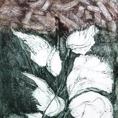 """""""Living, Breathing Bog"""", Carborundum, edtion of 5, 37 x 25cm, Katherine Smits.jpg"""