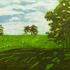 """""""Shadow Trees, the Curragh"""", Collagraph, 25 x 32cm, ed of 20, Eileen Keane"""